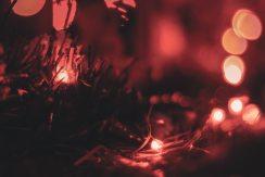 blur-blurred-background-bokeh-720457